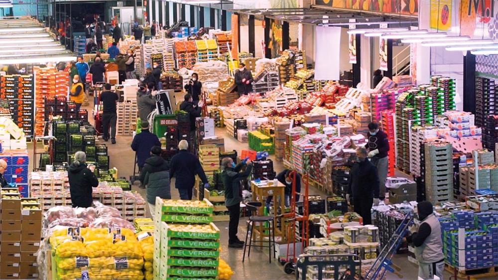 Mercazaragoza. Mercado de frutas y verduras.